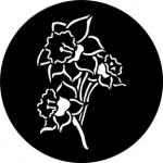 Standardstahlgobo Rosco Daffodil 77669