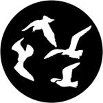 Standardstahlgobo Rosco Gulls 78096