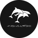 Standardstahlgobo Rosco Dolphins 78633