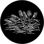Standardstahlgobo Rosco Grasses 2 71029